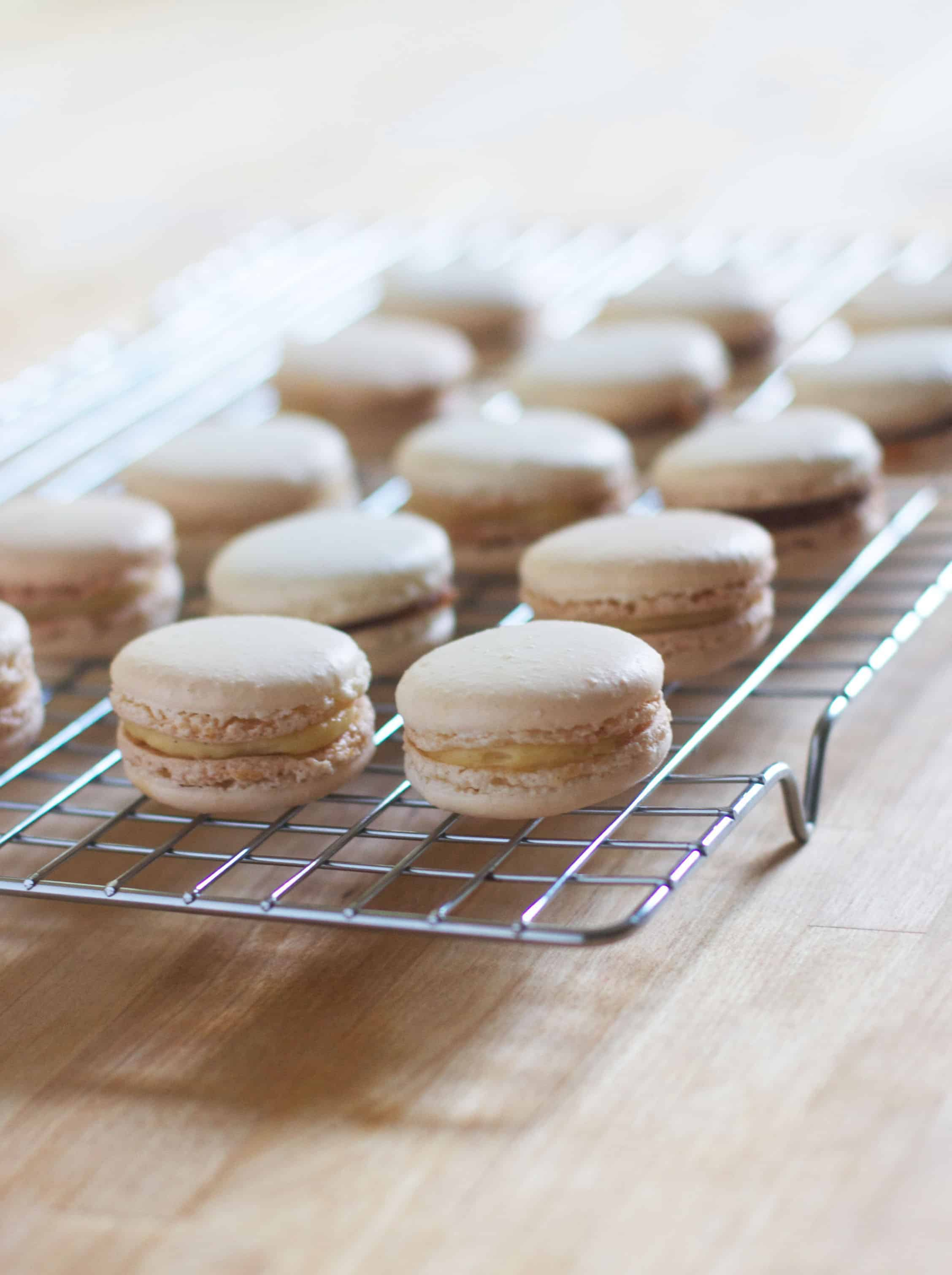 Basic Macarons